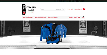 Karate IJlst shop